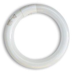 Synergetic TGX22 körfénycső 22Watt