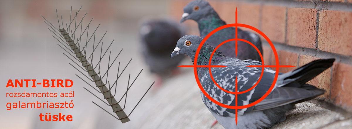 anti-bird-rozsdamentes-acél-galambriaszto-tuske-riasztoszerek.hu
