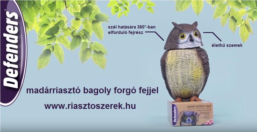 madarriaszto_bagoly